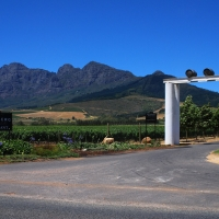 Backsberg Wine Estate